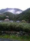 Harunooyama
